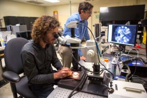 Two researchers prepare targets for laser experiment.